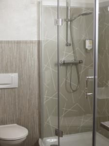 Hotel room Hotel Dresdner Hof Bathroom with shower