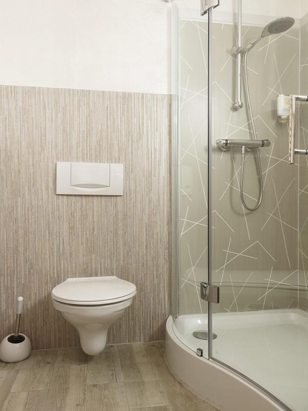 Hotel room Hotel Dresdner Hof Zittau shower